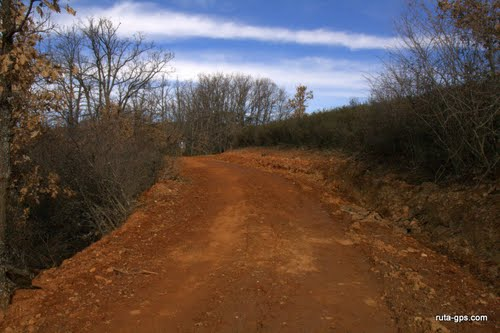Camino de Matallana
