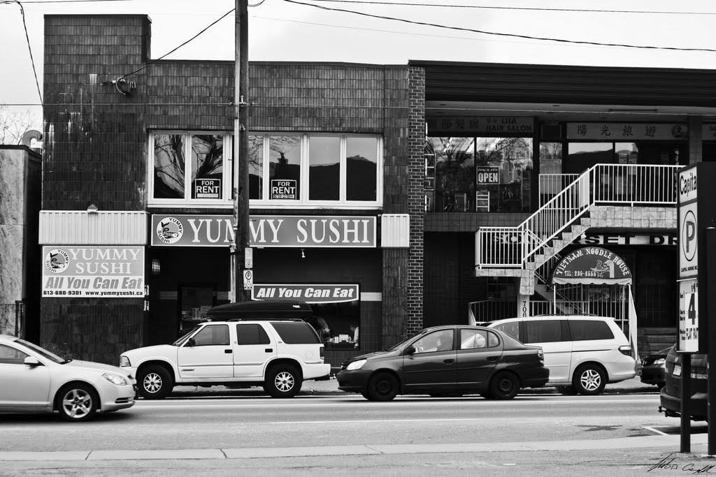 Somerset Street West, December 5, 2010