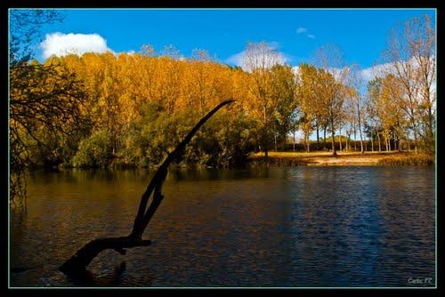 Río Tormes a su paso por Huerta (Salamanca)