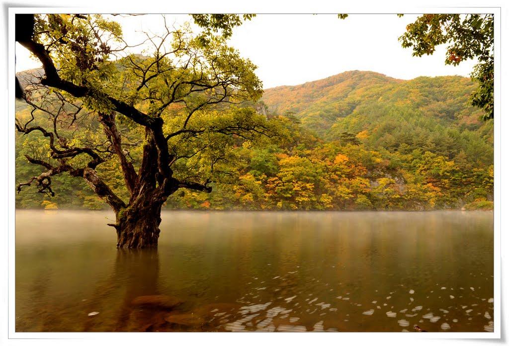 Ijeon-ri, Budong-myeon, Cheongsong-gun, Gyeongsangbuk-do, South Korea