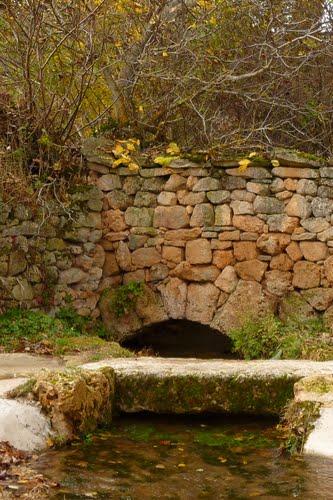 Pedro. Puente del río Pedro, recién surgido