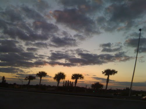 Palm Beach County, FL, USA