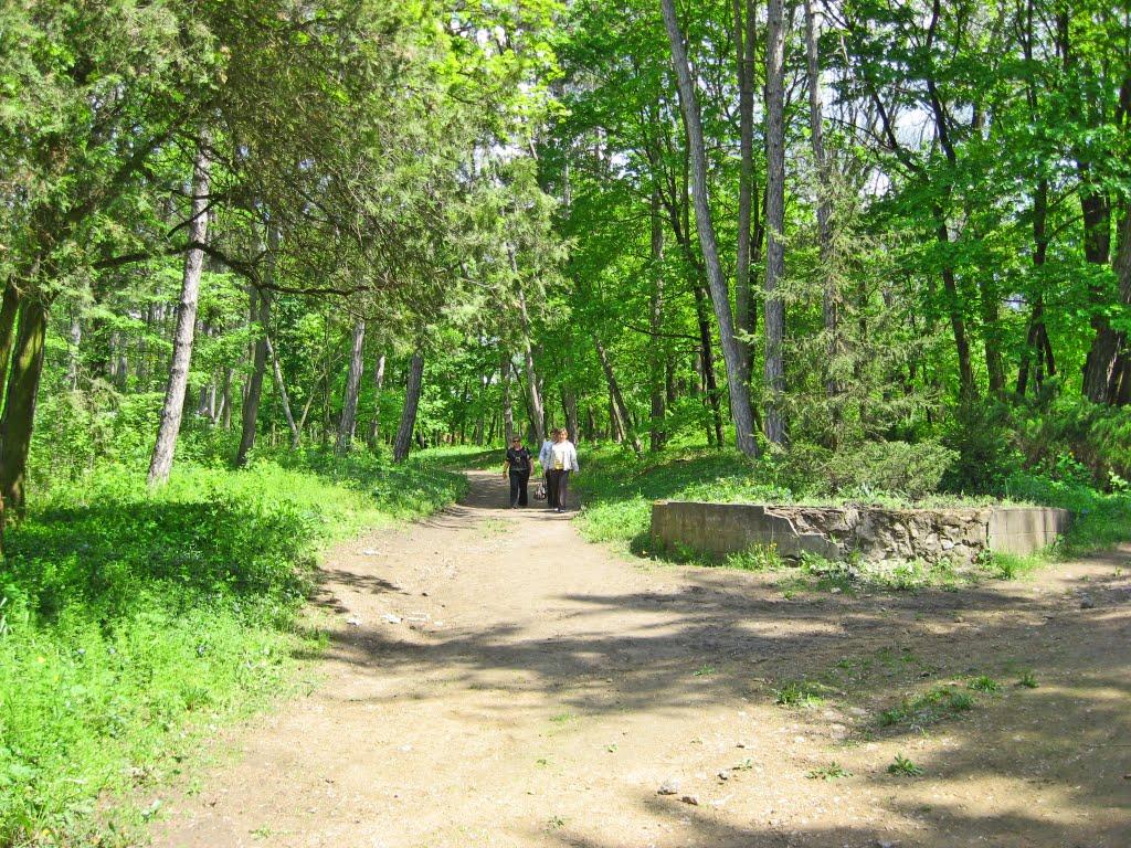 Прогулянка парком