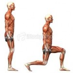 Lunges: Quadriceps Strengthening Exercises To Jump Higher