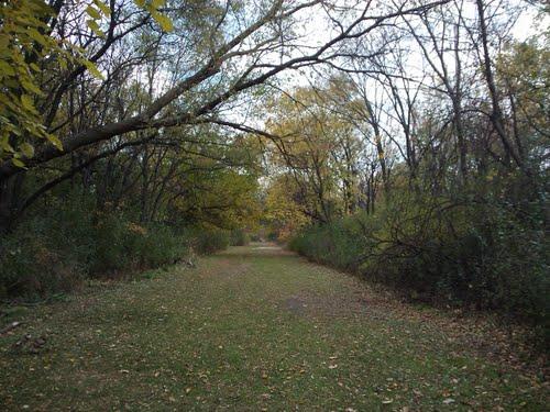 Monkey Trails 2, Elmhurst, IL