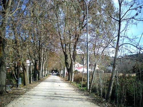 Valdezas