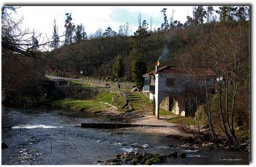 : Paseando por el rio Tea