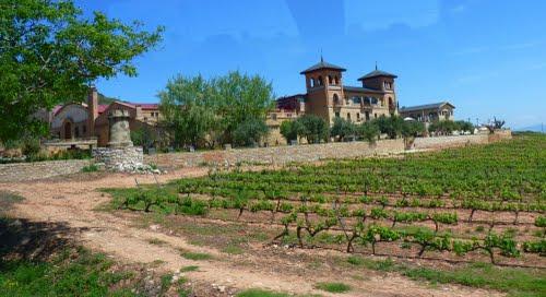 Tierra de viñas