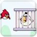 愤怒的小鸟救伙伴