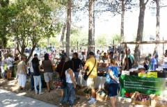 Más de 2.000 personas visita el Ecomercado Salinas en el que ha participado una veintena de puestos de la zona