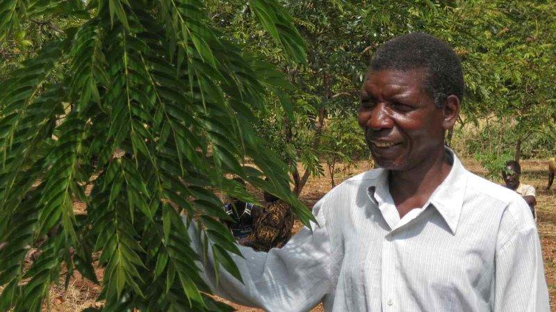 The Clinton Development Initiative has been helping small farmers in Tanzania, Malawi, and Rwanda