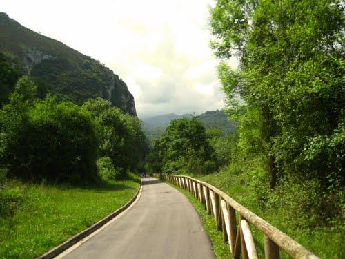 En la senda verde