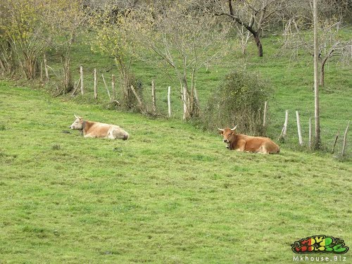 @ Galdames, Basque Country ... Mkhouse 2012