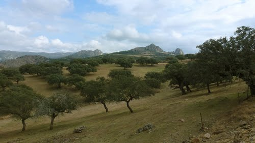 Spanje, Extremadura, Malpartida de Plasencia