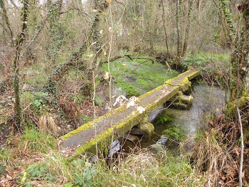 Pontella no río Furnia