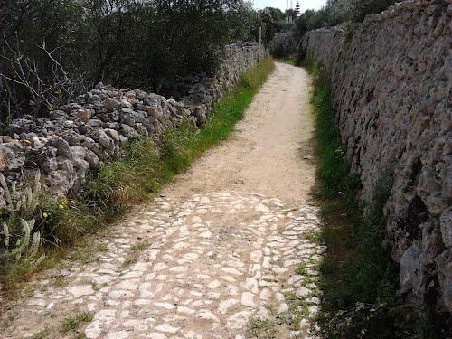 Cami Vell de Sant Climent 04