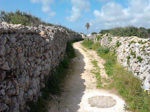 Cami Vell de Sant Climent 07