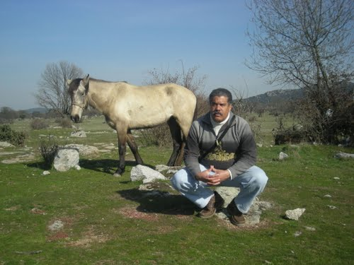 The man and horse