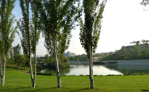 Turia. Park Header - Parque de cabecera - Parc de Capçalera.