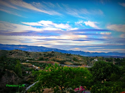 Primavera. Víznar (Granada)