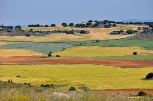 paisajes y colores camino de Cuenca