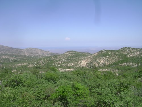 vista desde la piedra larga