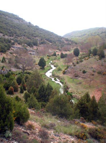 Río Matavieja