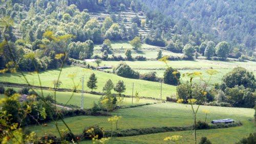 Camps a la Vall. Gombrèn
