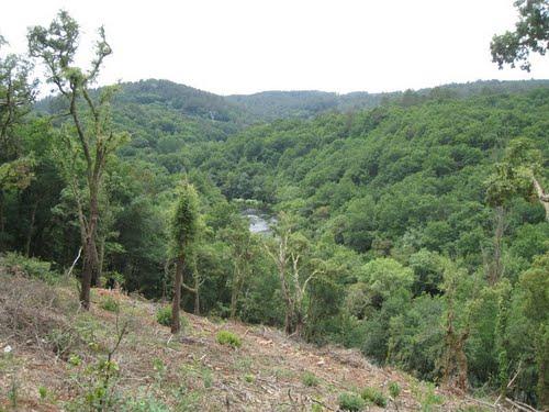 PRG93 - Ruta da Ribeira do Ulla (Touro)