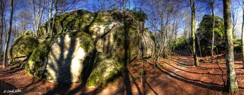 Les Roques Encantades (Sant Feliu de Pallerols)