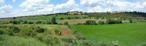 Paisaje en Valdeavellano de Ucero (Soria)