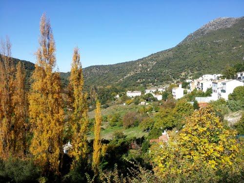 Cálido otoño en Benamahoma (Cádiz, España) 6