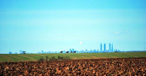 A caballo, de paseo por Madrid!
