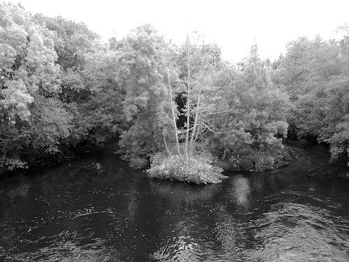 Rio Tambre