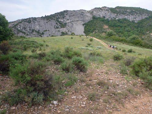 Gorgonchon (Formiga)  2012