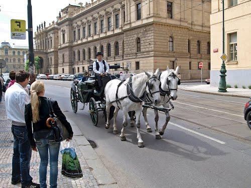 Fiaker vor dem Rudolfinum, Praha, Prague, Prag