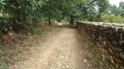 Olha a beleza das estradinhas... - Camino de Santiago
