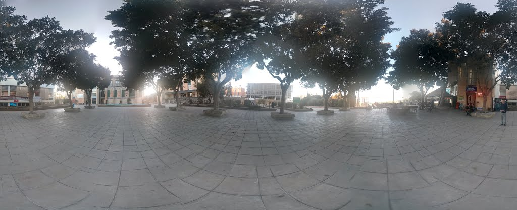 Univesity of Malta Quadrangle