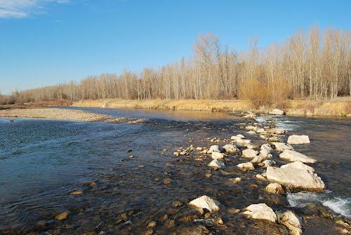 Río Bernesga. Lorenzana.