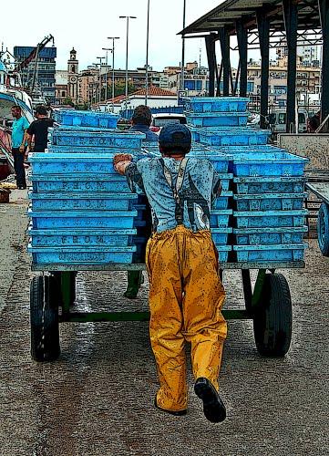 pesan mas el carro y las cajas, que el contenido de lo obtenido de la mar