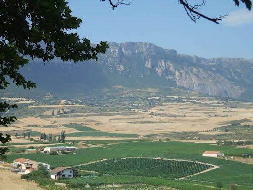 Region Rioja