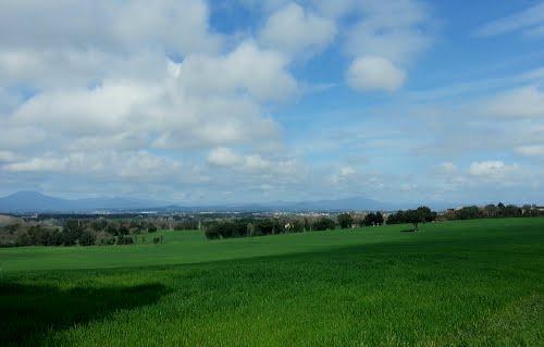 Primavera a Sant Andreu Salou