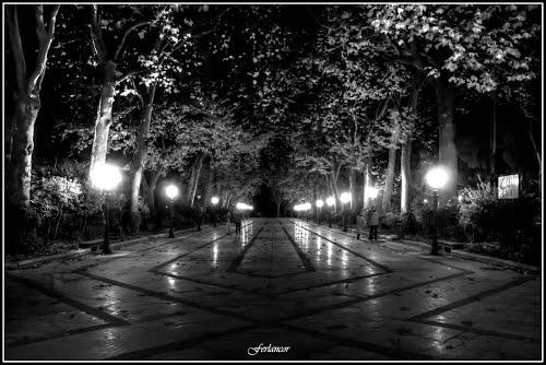 Alameda   de  Ronda  vista  nocturna (f). Dedicada  a **Manolo  Dueñas**