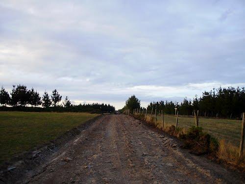 Obras de mejora pista Cordal do Arangón verano 2012