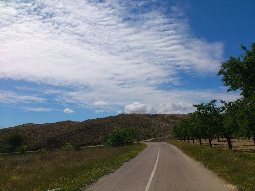 Camino de La Alcoraya a Rebolledo