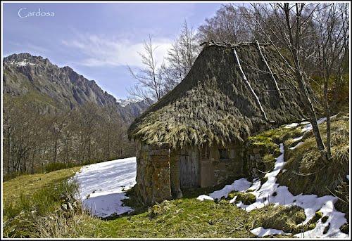 Payoza en Valle del lago (Somiedo-Asturias)