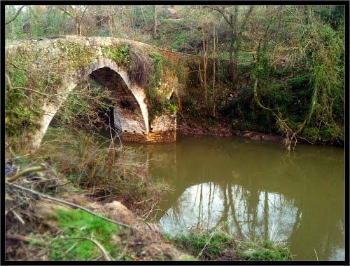 Puente de Brañes