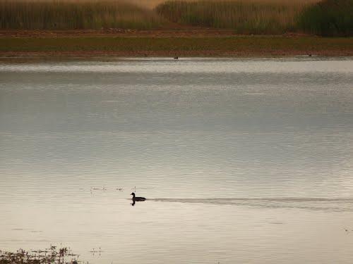 Laguna de Setiles