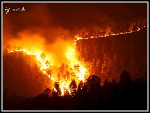 ? Incendio en el sur de Tenerife (Mi homenaje a todos los que luchan contra el fuego)