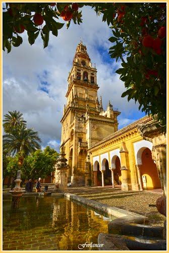 Torre   de  la  Mezquita, fuente  del  olivo y  Patio de los  Naranjos (f) Dedicated  to  **Pom**.
